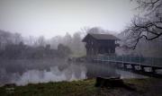 Biotope Wildlife Park in Duitsland. Er hing die dag een dikke mist. (januari 2016)