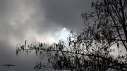 Eclips 20 maart 2015 Rijswijk Zuid-Holland, 11.20,06 uur. De Eclips was moeilijk te zien maar er waren een paar geluks momenten.