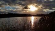 Meijendel in de winter 2015. Meijendel is een uitgestrekt duin- en natuurgebied ten westen van zuidelijk Wassenaar en ten noorden van Den Haag (Scheveningen). Het is een waterwingebied dat wordt beheerd door Dunea. De naam Meijendel is ontstaan doordat in een vallei een boerderij gestaan heeft, die genoemd werd naar de vele meidoorns die in de omgeving groeiden.