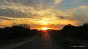 Onder gaande zon boven natuurgebied Meijendel. Een fietsroute voert door het natuurgebied Meijendel naar Scheveningen, Clingendael, Duindigt en het Ecoduct. De route is 15 kilometer lang en begint bij Boerderij/bezoekerscentrum Meijendel in Wassenaar. (november 2015)